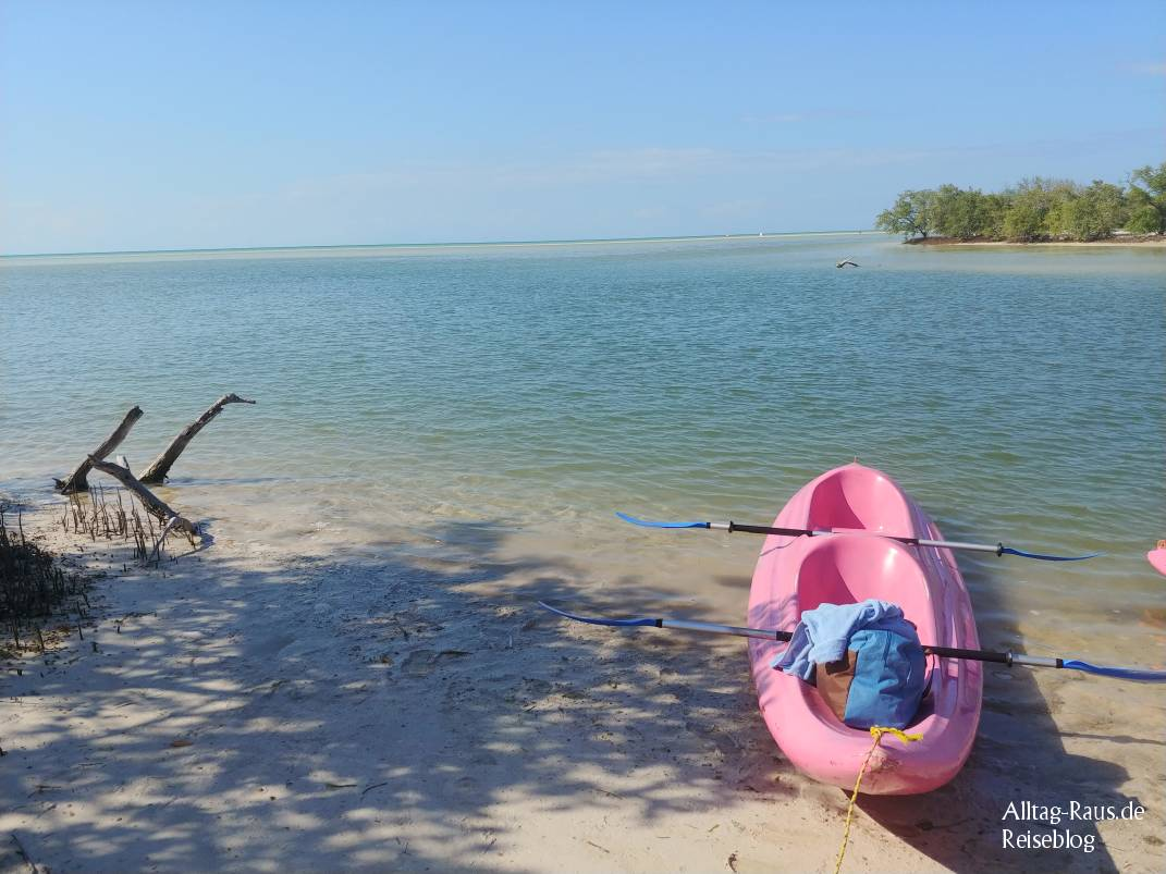 Kayak Tour Holbox