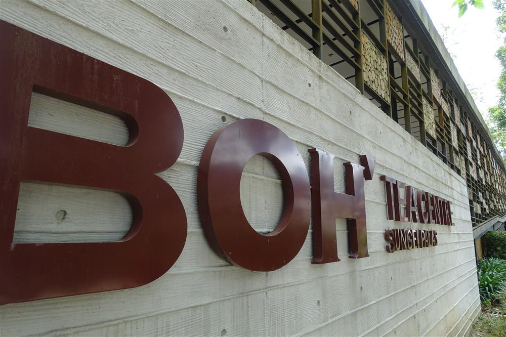 Boh Tea Factory